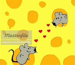 mice and cheese love