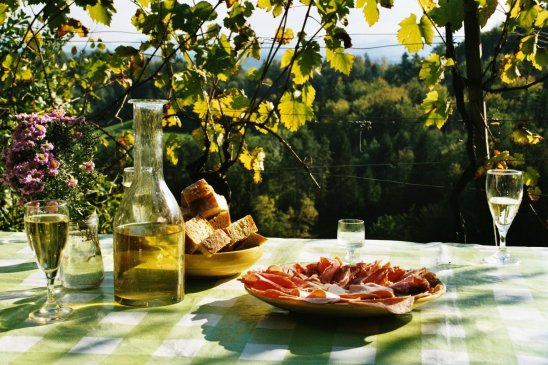 break_eat_picnic